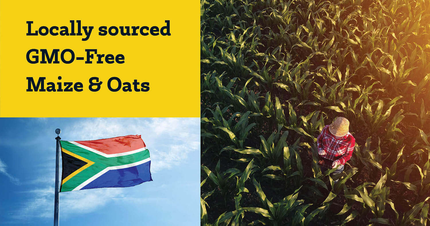 Bhubesi Nutrition - Locally sourced GMO-Free Maize & Oats Meals
